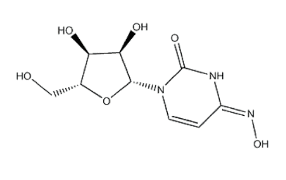Structure of Beta-D-N4-hydroxycytidine